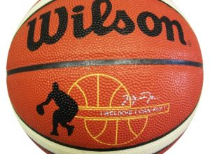 basketbolnyy-myach-wilson-2000