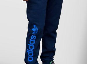 shtany-adidas-1-2200